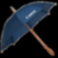 зонты1 (1).png