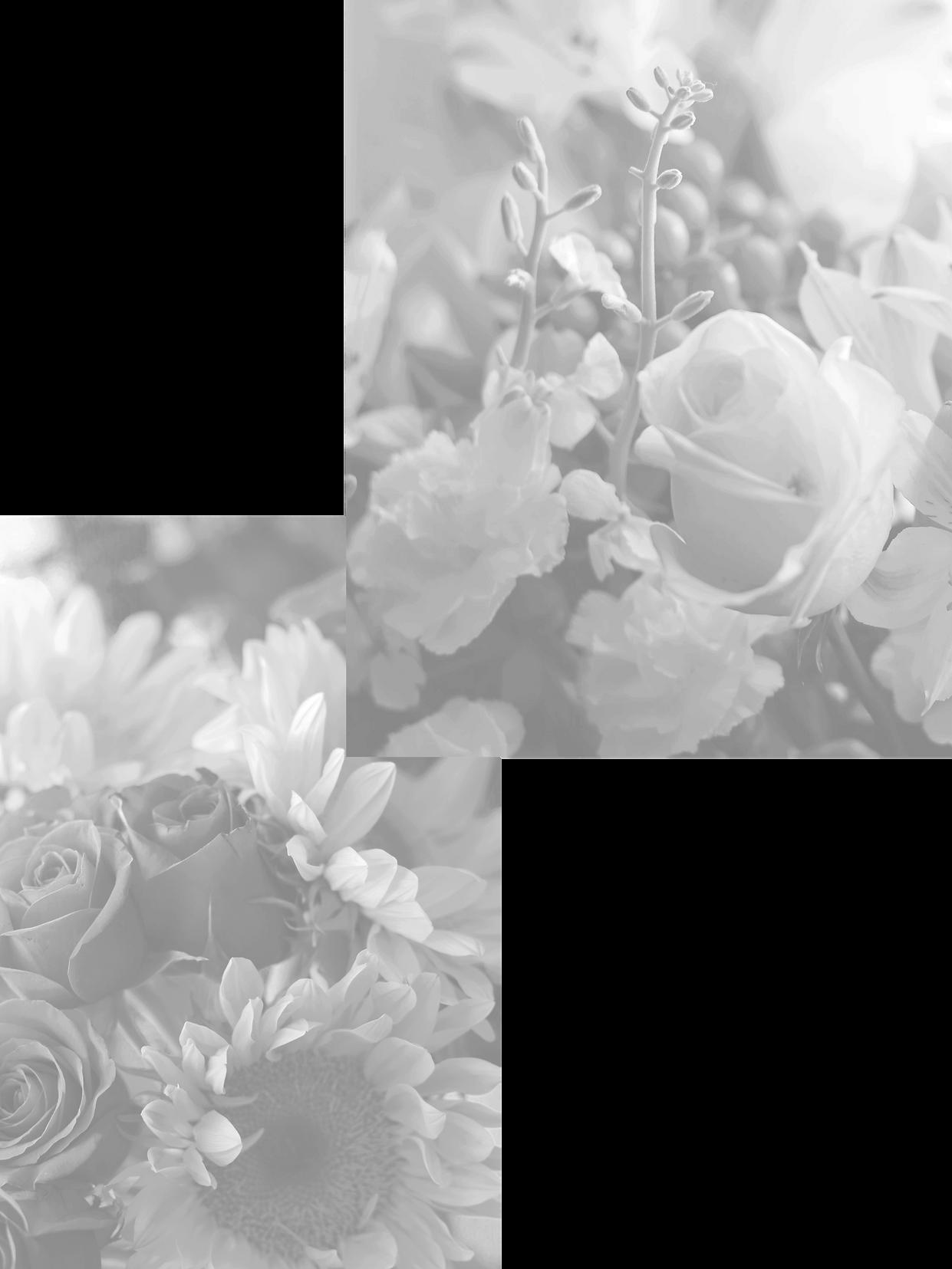 Untitled-2_edited_edited_edited_edited_e