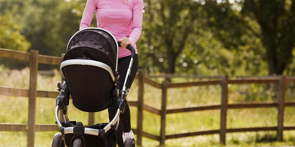 ONLINE Postnatal Recovery & Fitness Expert Led Talk