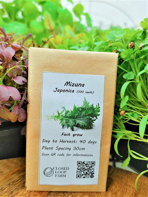 Seeds: Mizuna   (100 seeds)