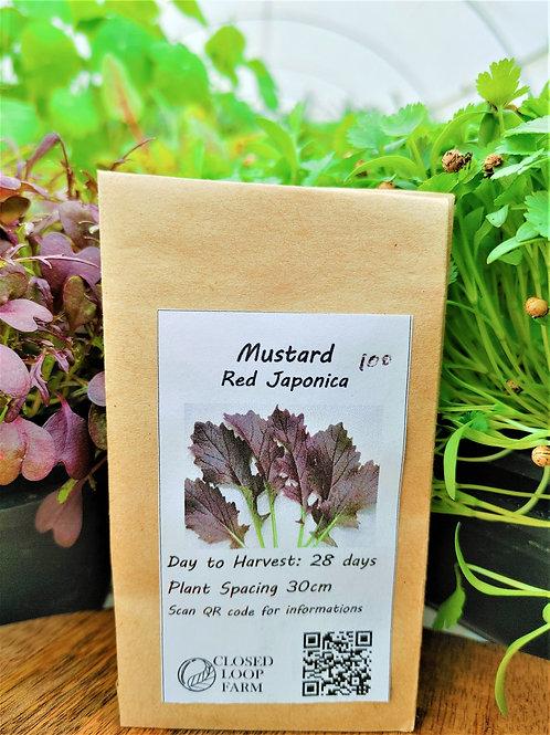 Seeds: Mustard - Red   (100 seeds)