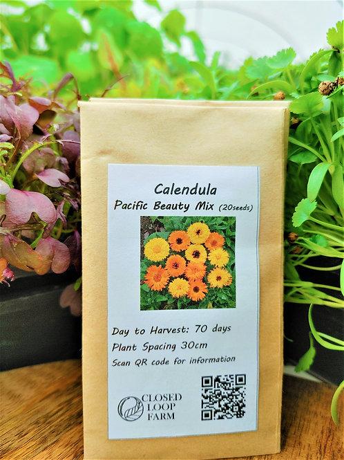 Seeds: Calendula – Pacific Beauty Mixed (20 seeds)