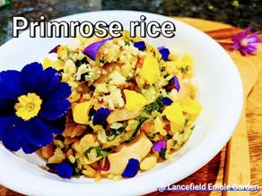 Primrose Sweet Potato Rice