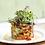 Thumbnail: Salad Leaf: Bright Purple - 1 mega punnet