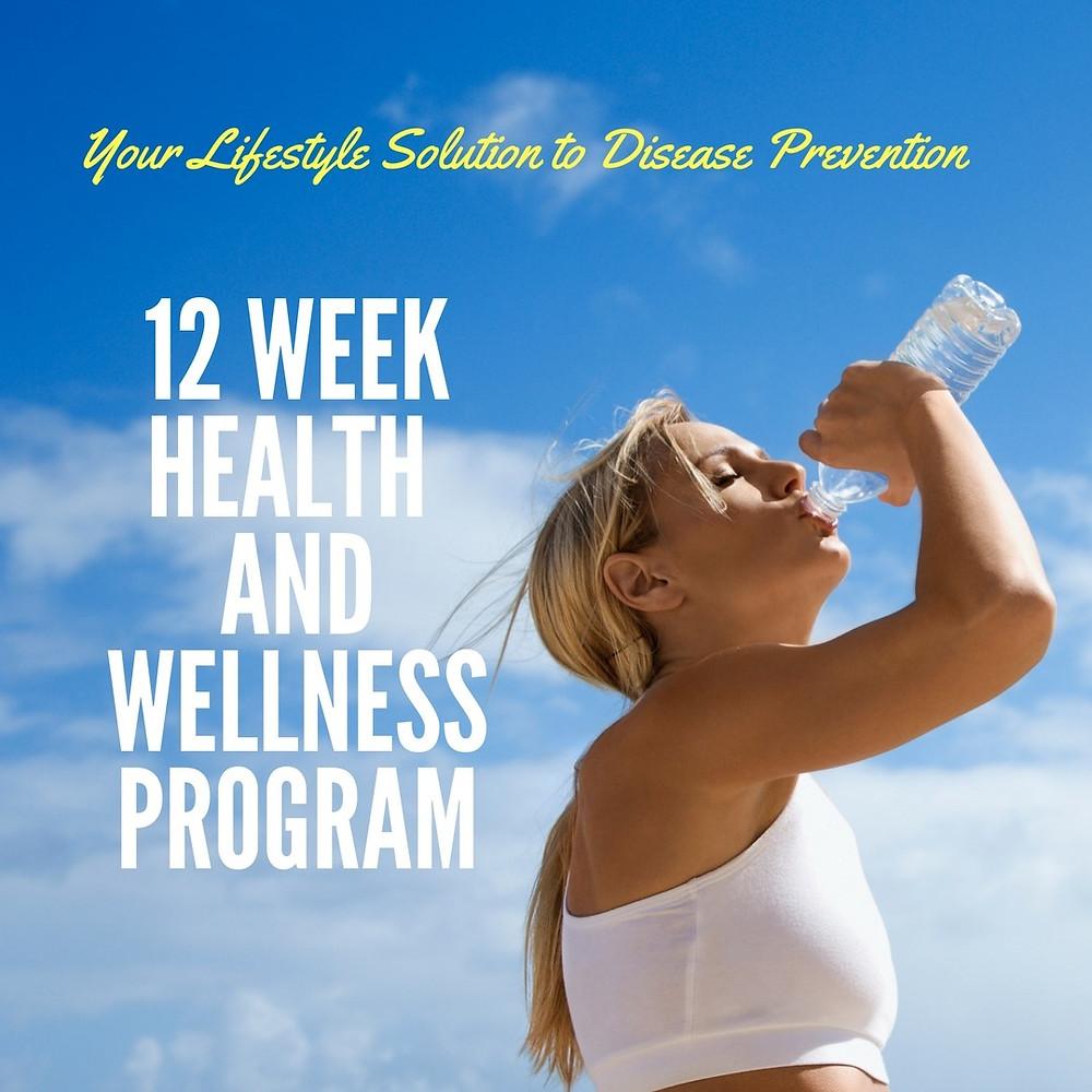 12 week health and wellness program
