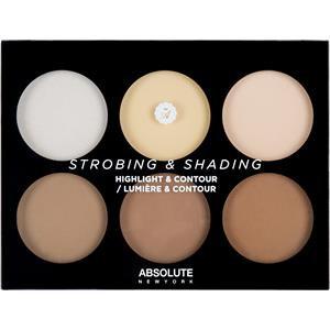 Strobing & Shading by Absolute New York - Set para Contour e iluminación