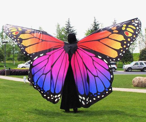 Alas mariposa Sunset