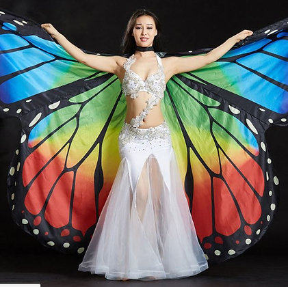 Alas de mariposa Arcoiris