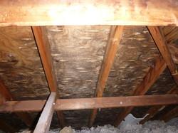 Flat Roof Attic Mould