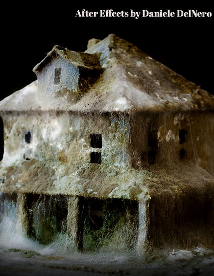 After Effects art installation of a mouldy house