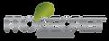 logo_pro-02.png