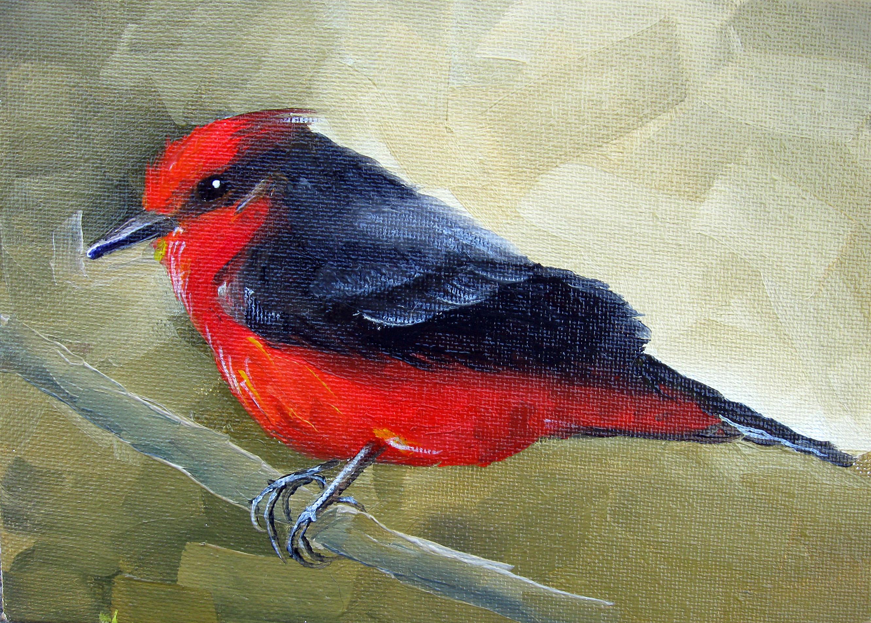 Vermilian Flycatcher