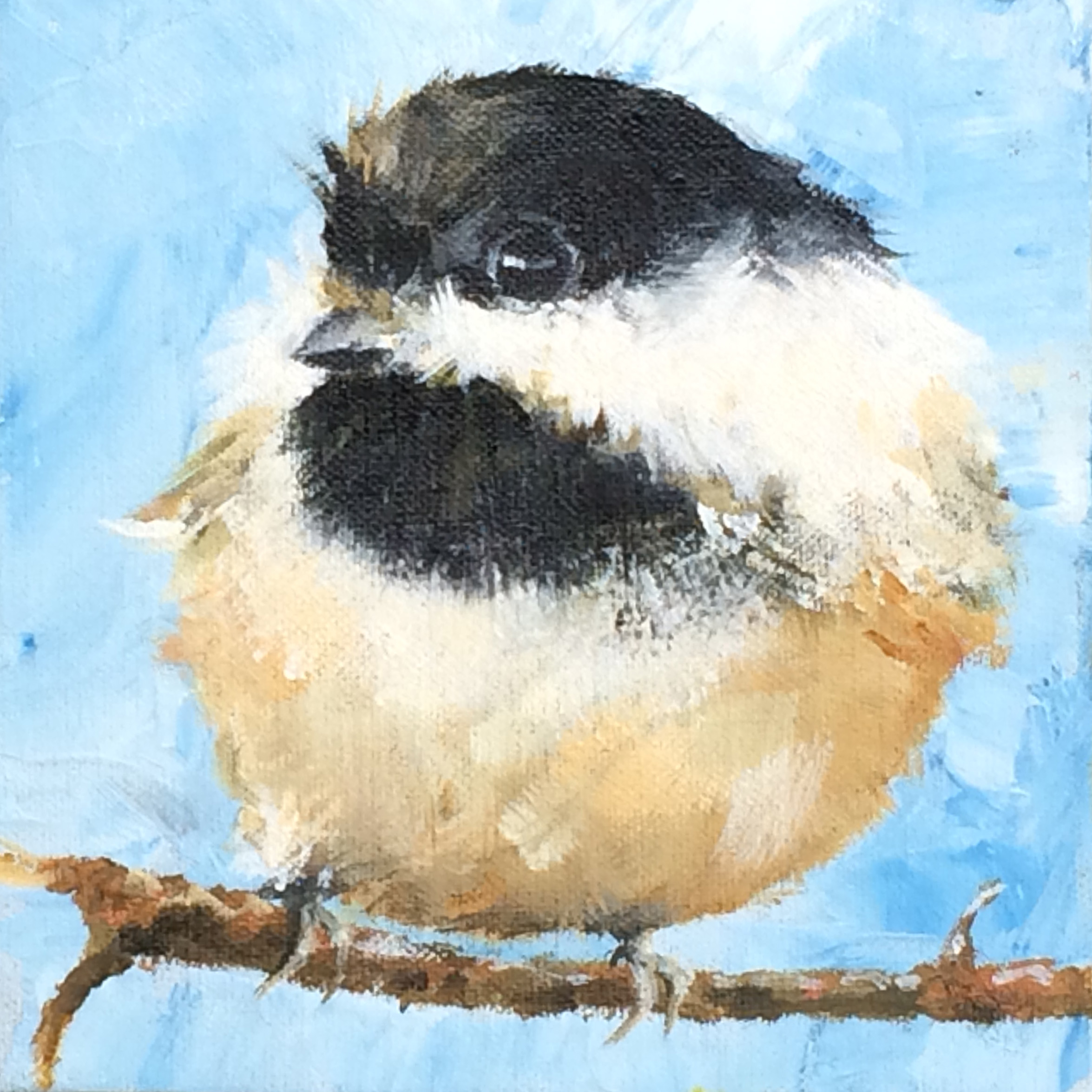 Chickadee in a Wind Storm