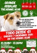 The Kennel Klub Christmas Sale