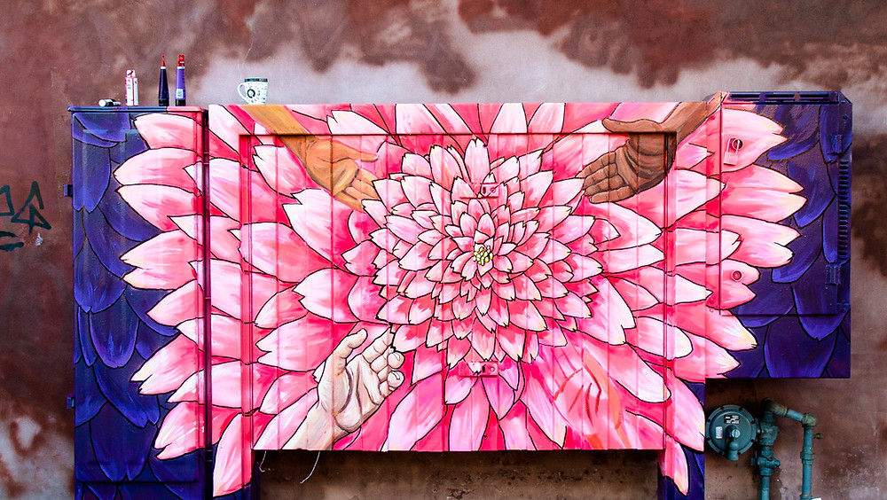 Flower, Pink, Toronto Video Production, Urban, Street Art, Colour, Urban Colours, Visual Smugglers