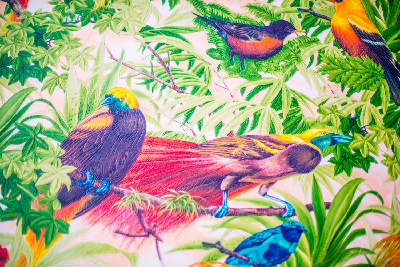 Behang_vogels