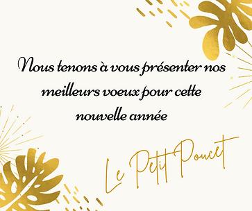 Le Petit Poucet (2).png