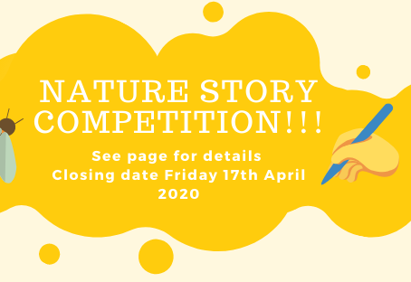 Short story competition | NATURE