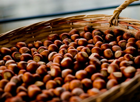 """Misto Chiavari"" Hazelnut production"