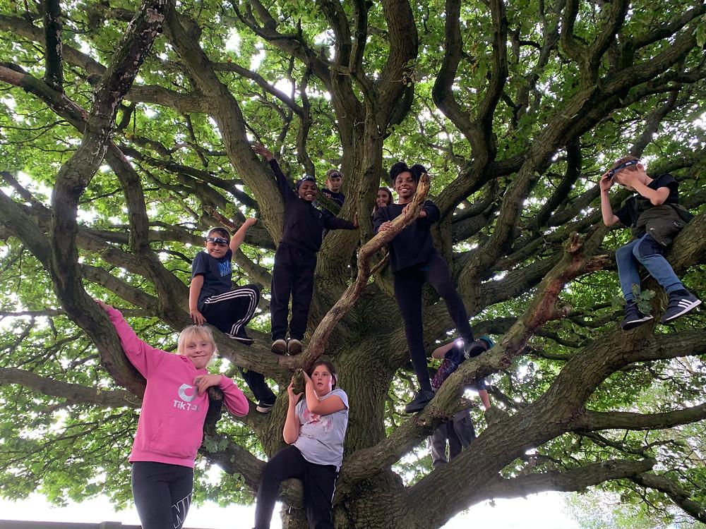 Photo of Kids Kabin's members climbing a tree