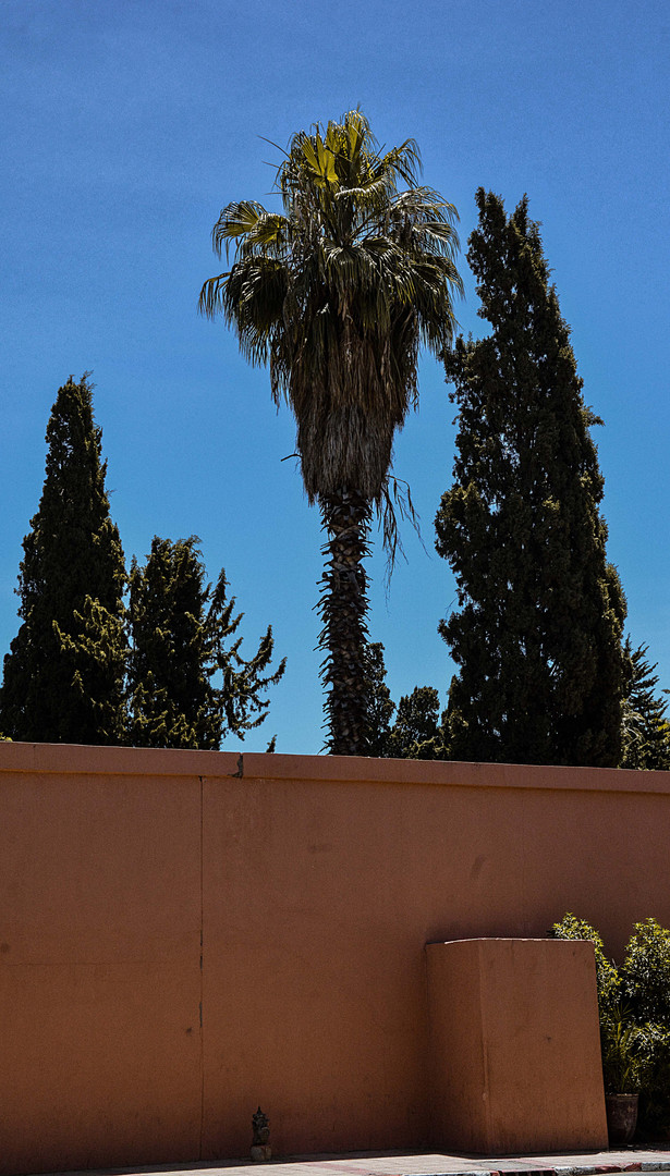 Morocco_-32.jpg