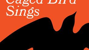 A Book About Childhood Struggle