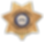 FCSO BADGE_DS.png