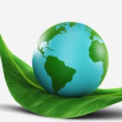 HEALTHY EARTH.jpg