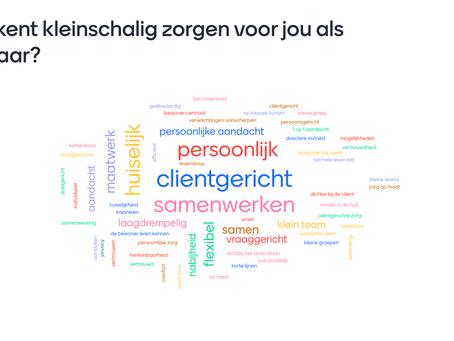 Online visie ontwikkelen met 64 behandelaren van topaz