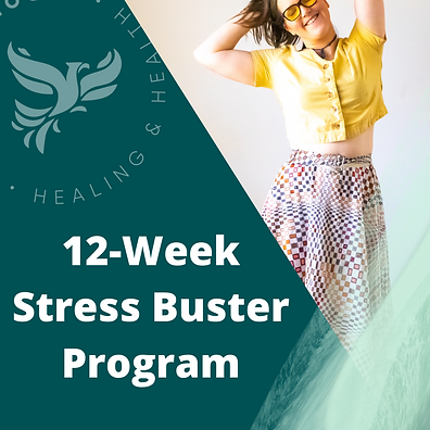 stress program dashboard.png