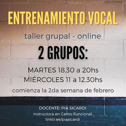 Entrenamiento vocal online feb21.jpg