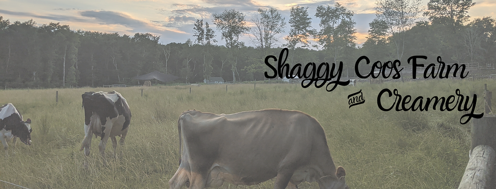 Shaggy Coos Farm & Creamery.png