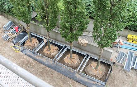 IFF 505-Univers, quadratischer Unterflurbaumrost mit herausnehmbaren Segmenten bei großen Wurzelballen für ein BV. in Hamburg.