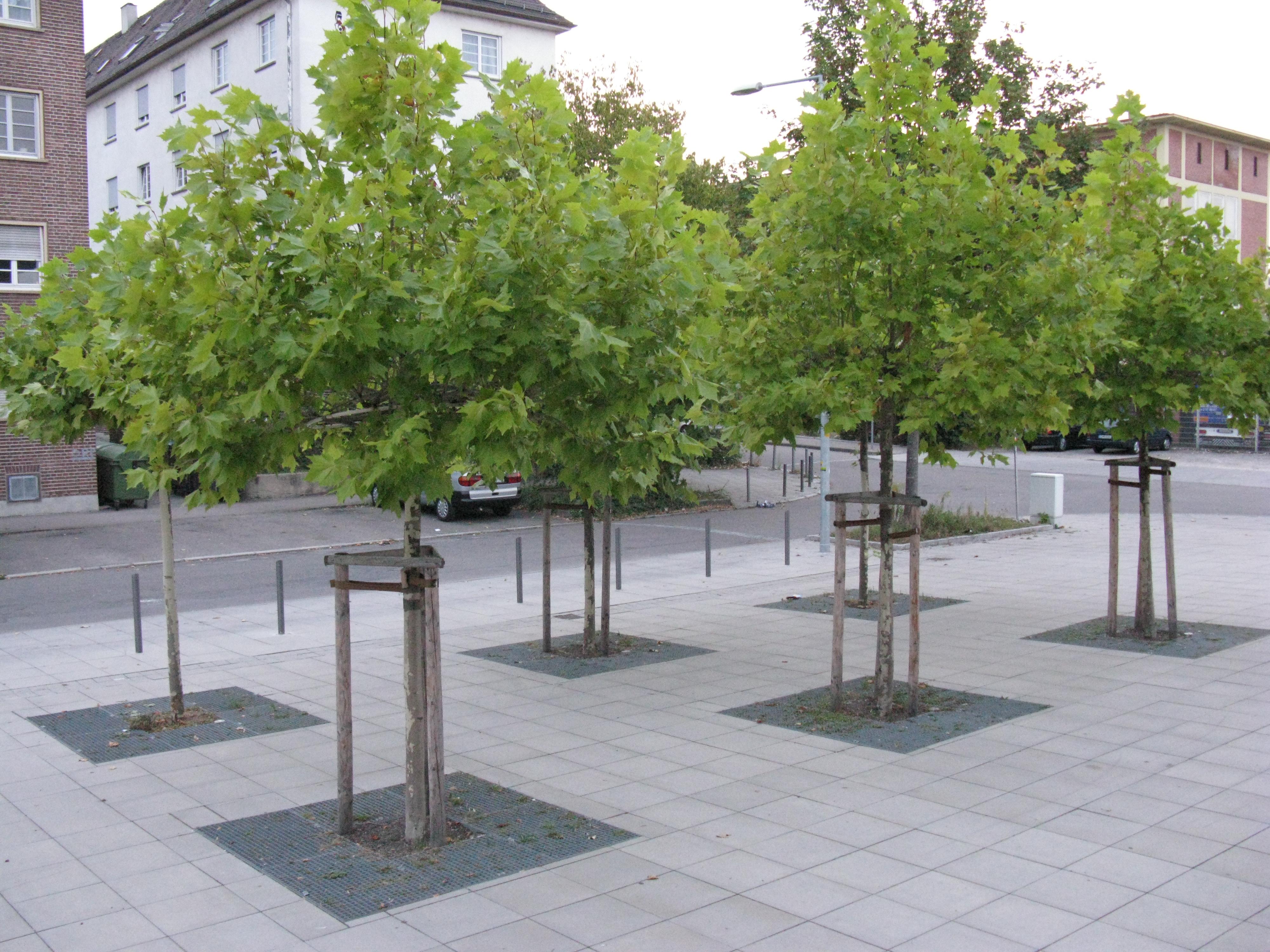 Stuttgart, Lidl & Kita (2007)