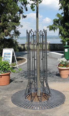Baumschutzgitter IFF 302 für Bäume mit größerm Stammumfang mit Oberflächenbaumrost IFF 560-04 auf der Insel Mainau im Bodensee.