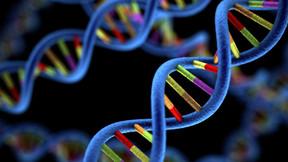 O povo da África deve ser capaz de escrever sua própria agenda de genômica