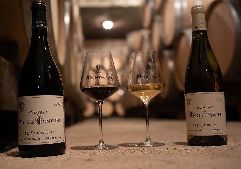 Visite de Cave et dégustation de vins de