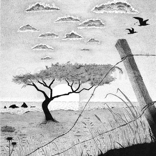 Antone_Pen and Ink_18x24_Memories.jpg