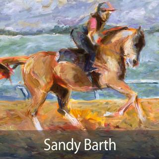 Sandy Barth INTRO.jpg