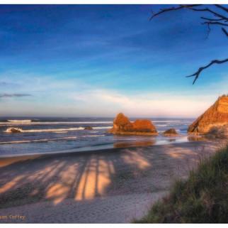 Susan_Coffey_Oregon_Beach.jpg
