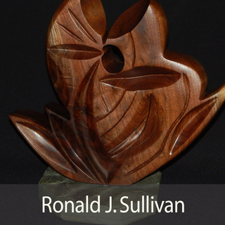 Ronald J. Sullivan INTRO.jpg