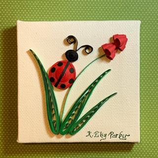 Ladybug_Riley Parker.JPG