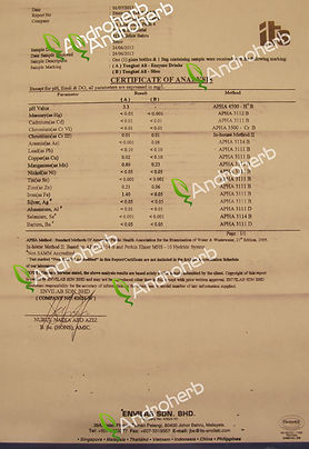 Lab Report Androherb Tongkat Ali