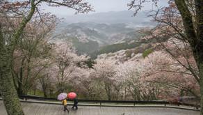 全日本地域活性化連盟 奈良県五條支部設立準備開始