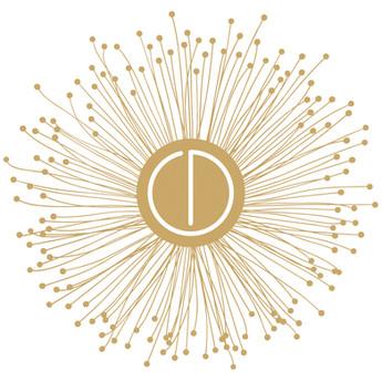 cd-logo_large.jpg