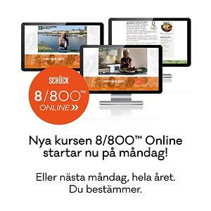 _Schuck_8800_Online4.jpg
