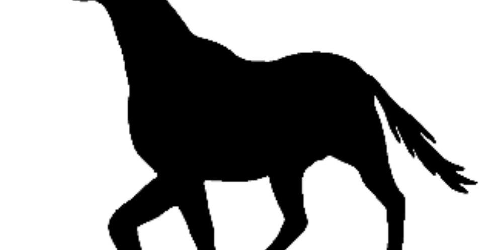 HORSE78