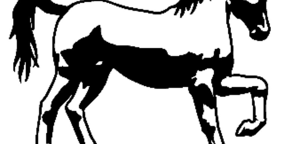 HORSE61