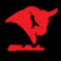 Bull_e_soccer_logo_vf_mars_15-01.png