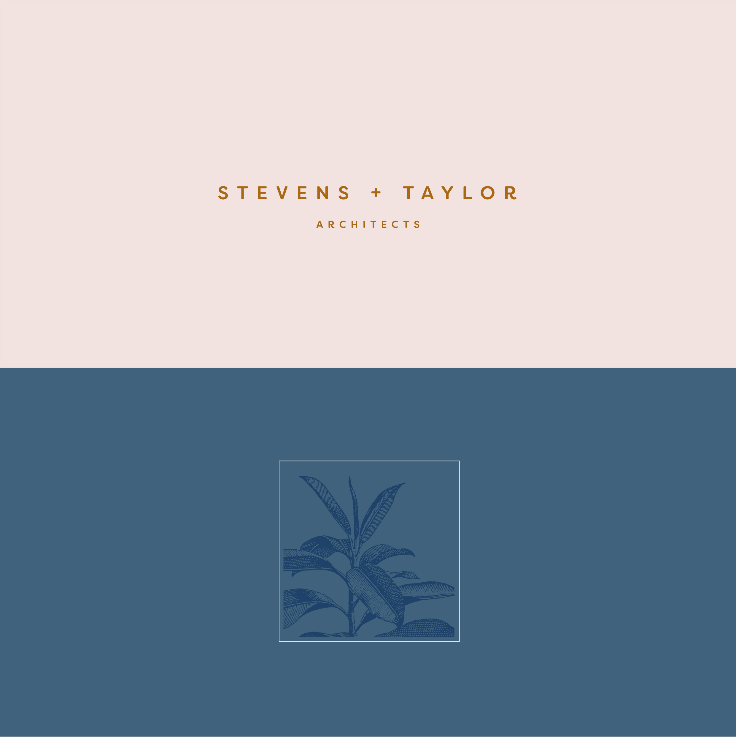 stevens taylor-02